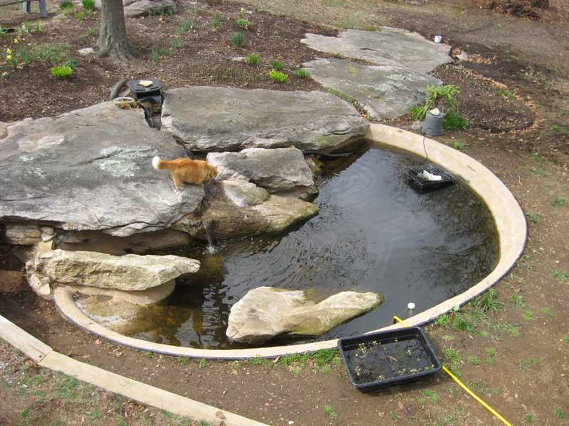 stone  ponds